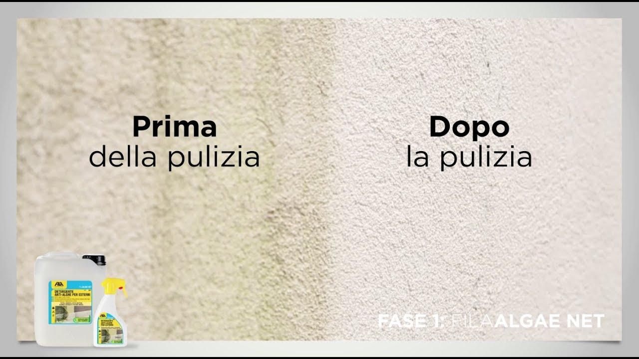 Togliere Intonaco Da Mattoni muri esterni con problemi di alghe, muffe e annerimenti?