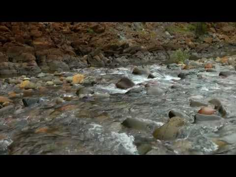 Rough and Ready and Baldface Creeks—Among America's most endangered rivers