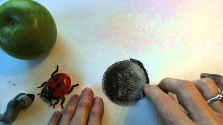 Drawing Basic Shapes: A Sphere
