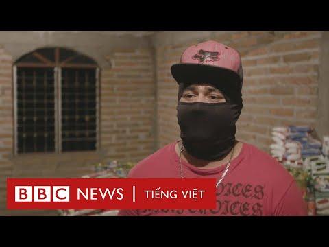 Băng đảng ma túy Mexico lợi dụng dịch Covid-19 ra sao? - BBC News Tiếng Việt