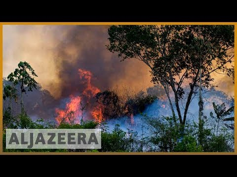 Brazil's Amazon fires could cause disastrous climate change impact