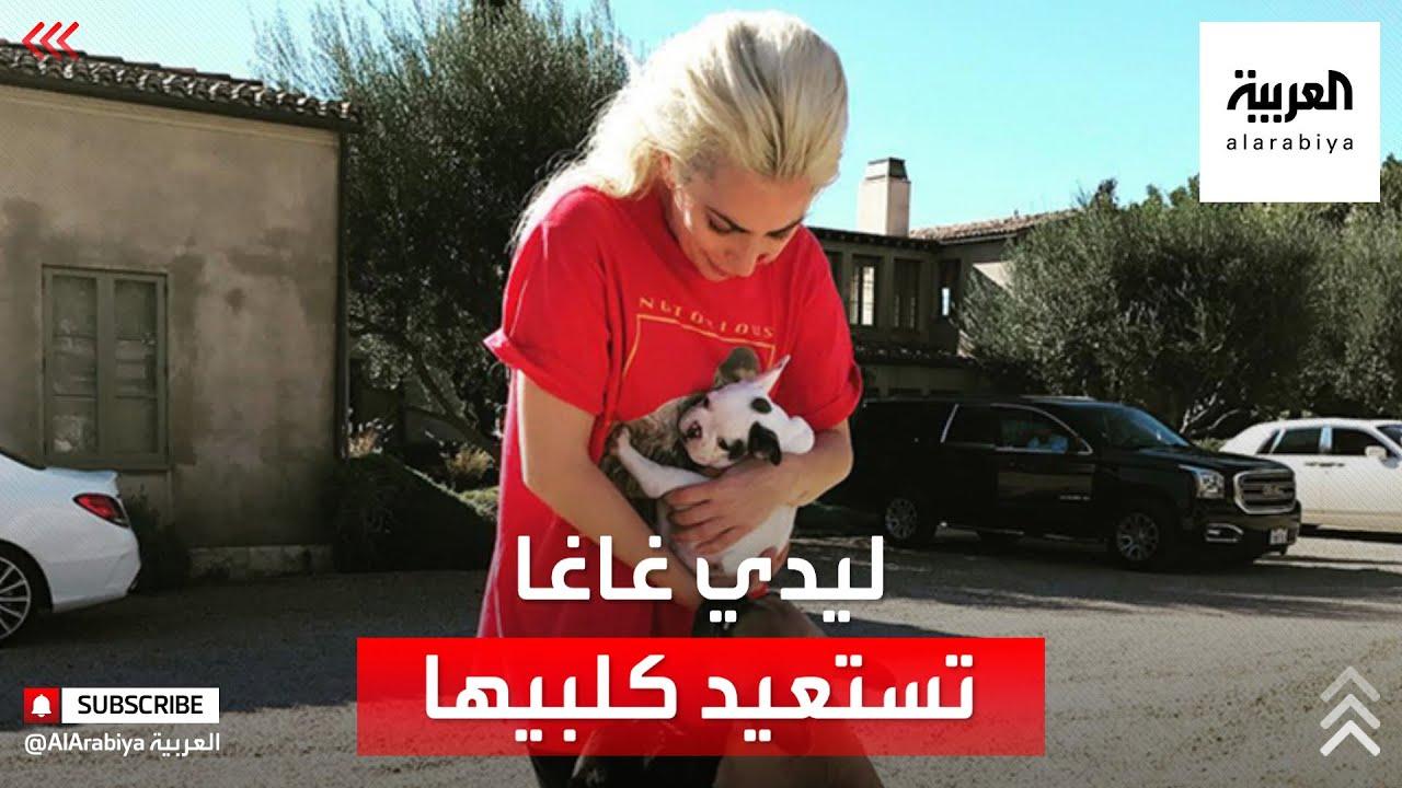 نصف مليون دولار وسرقة.. كيف استعادت ليدي غاغا كلبيها؟  - نشر قبل 3 ساعة