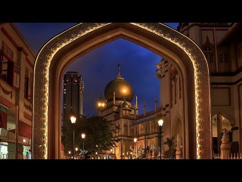 Top 5 Places to Visit | Singapore Travel