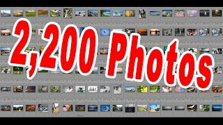 Critiquing ALL 2,200 Photos Submitted: Summertime Photo Challenge