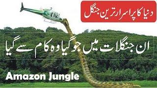 Amazon Forest Documentary in Urdu/Hindi   Amazon Jungle Facts in Urdu