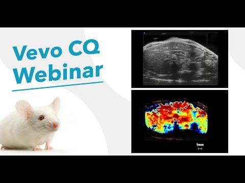 February 2018: Contrast-Enhanced Ultrasound Imaging: Advanced Data Analysis with Vevo CQ