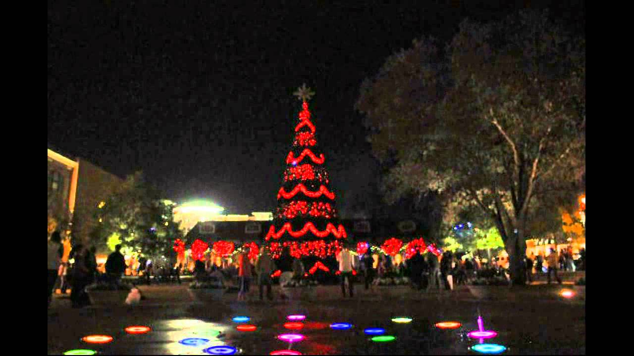Woodlands Christmas Lights Decoratingspecial Com
