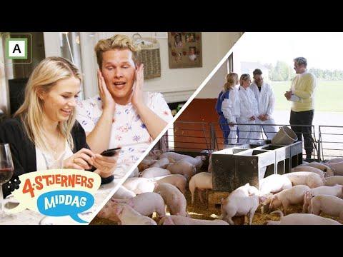 4-stjerners Middag   Potetstafett med SMS-Roulette   TVNorge
