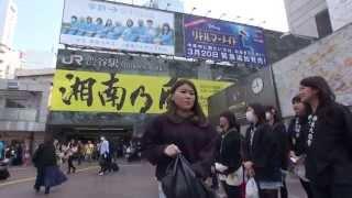 天理教 渋谷スクランブルです2013年。