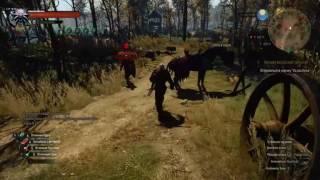 the Witcher 3. Бой против большой толпы стражников неизвестного уровня