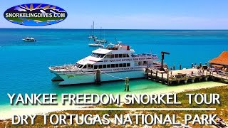 Yankee Freedom Snorkeling | Dry Tortugas National Park