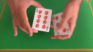 Bicycle Froots Playing Cards