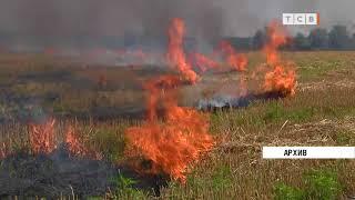 В Приднестровье из-за жары горят убранные поля