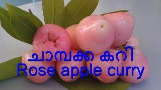Champakka Curry ചാമ്പക്ക കറി Rose apple curry