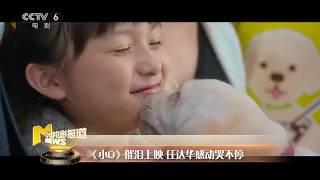 导盲犬电影《小Q》催泪上映 任达华感动哭不停【中国电影报道 | 20190628】