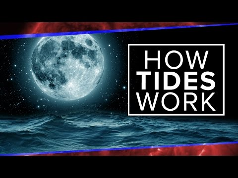 What Physics Teachers Get Wrong About Tides! | Space Time | PBS Digital Studios