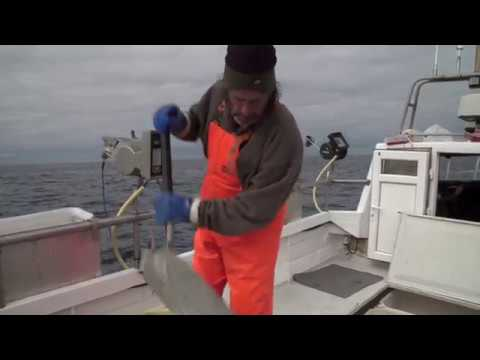 Costal Fisheries - North-Atlantic Ocean