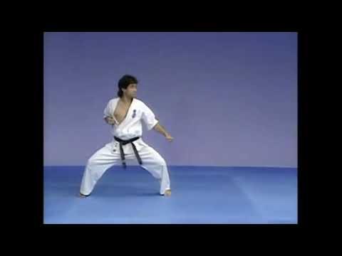 Ката Гекисай Дай Киокушинкай (Gekisai Dai Kyokushinkai)