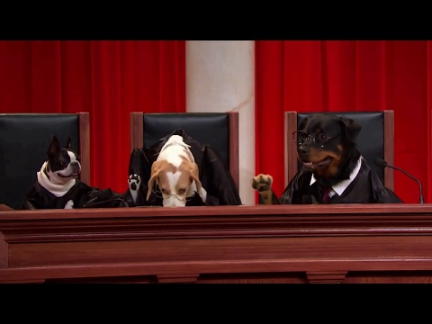 Honeycutt v. United States: Oral Argument - March 29, 2017
