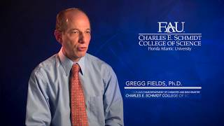 FAU Scientist Gregg Fields, Ph.D.: The Search for Novel Cancer Inhibitors