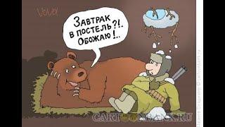 про медведей  с юмором и позитивом часть 2