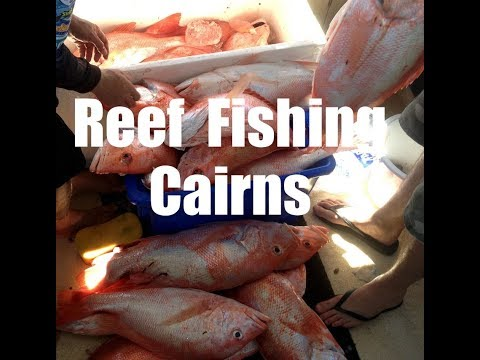 Reef Fishing Cairns