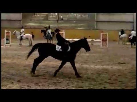 Atlarla oyun