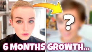 6 months since I shaved my head... (Growth Update)