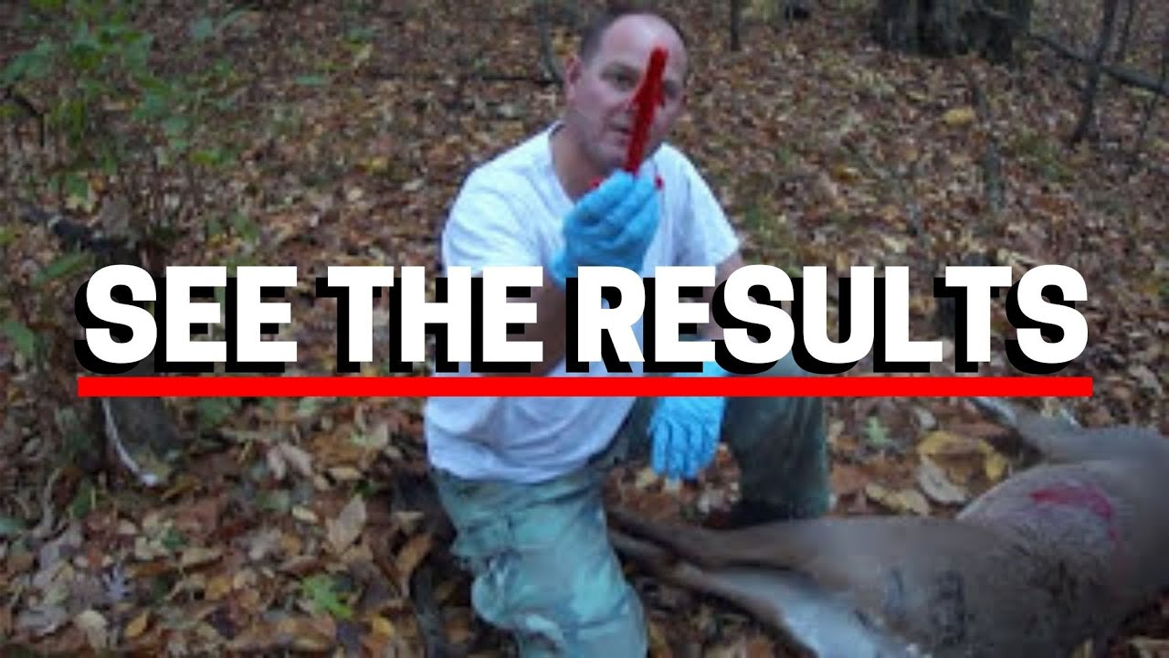 Field Dressing A Deer