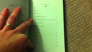 Video review of Jason Erik Lundberg's collection RED DOT IRREAL