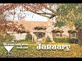 """The Drunk Lonely Wives Book Club: Pilot - """"January"""""""