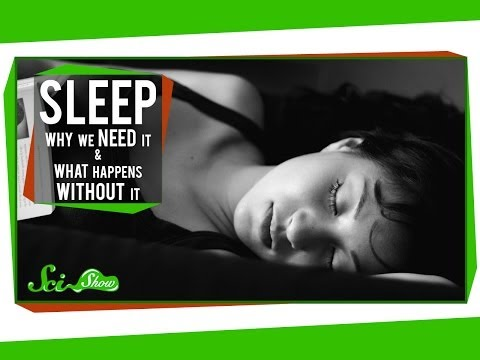 Sleep: Why We Need It and What Happens Without It