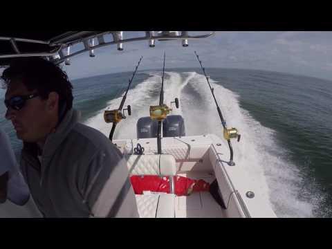 Oregon Inlet Bluefin Tunas