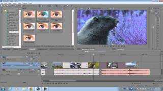 Sony Vegas Pro Video Editing | How To Use Sony Vegas Pro For Beginners.