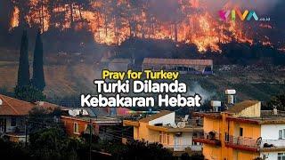 Kebakaran Hutan Hebat di Turki, Penduduk Berlarian Melarikan Diri