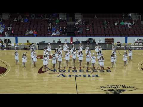 DCHS Drill Team Performs Hallelujah LED Wings At TOC 2019