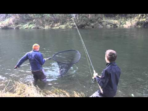 Blue heron guide service eli dave releasing a sol duc for Sol duc river fishing