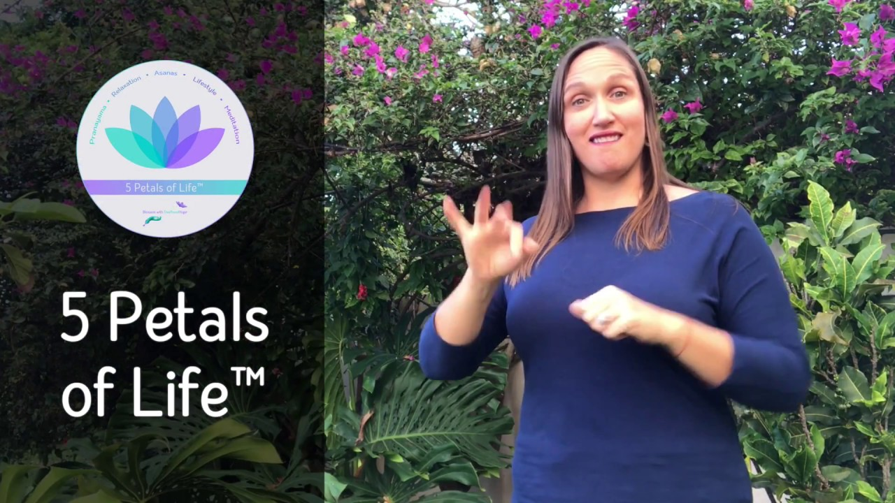 Deafhood Yoga As A Yoga Alliance Continuing Education Provider Yacep Youtube