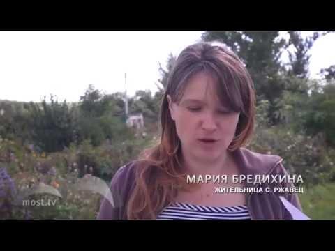 Репортаж о борьбе жителей Ржавец со строительством птицефабрики