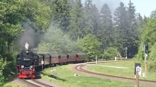 Narrow gauge steam train in Germany trens a vapor Alemanha kereta uap Jerman รถจักรไอน้ำ เยอรมัน