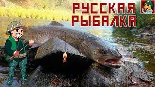 Русская Рыбалка 4 - Охота на Тайменя (р.Белая)