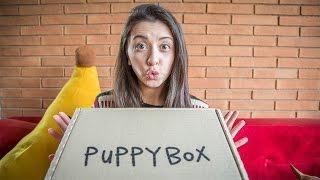 Hola gnomos! UNBOXING puppybox