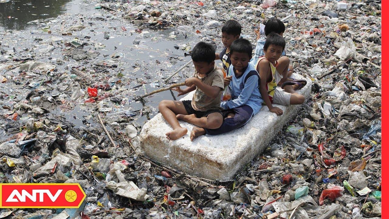 Túi nilong thứ đang hủy hoại khiếp sợ môi trường sống | An toàn sống | ANTV