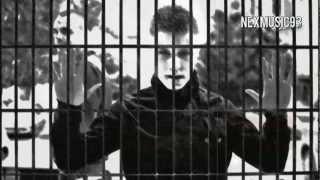 Drima - Za Tebe Više Ne Postojim (Tekst / Lyrics Video)
