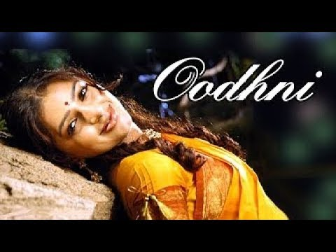 odhni-od-ke-nachu-|-udit-narayan-,-alka-yagnik-|-tere-naam-2003-love-dholki-song-|-salman-khan