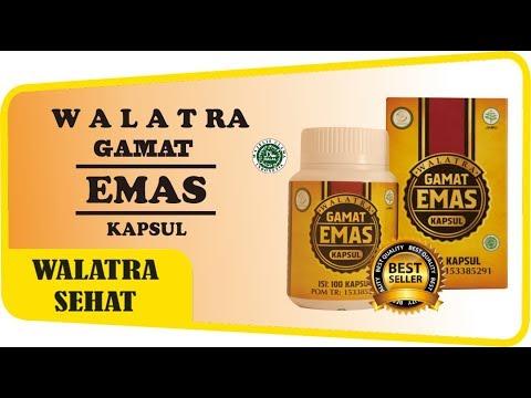 obat-herbal-100%-alami-dan-tanpa-efek-samping-|-walatra-gamat-emas-kapsul