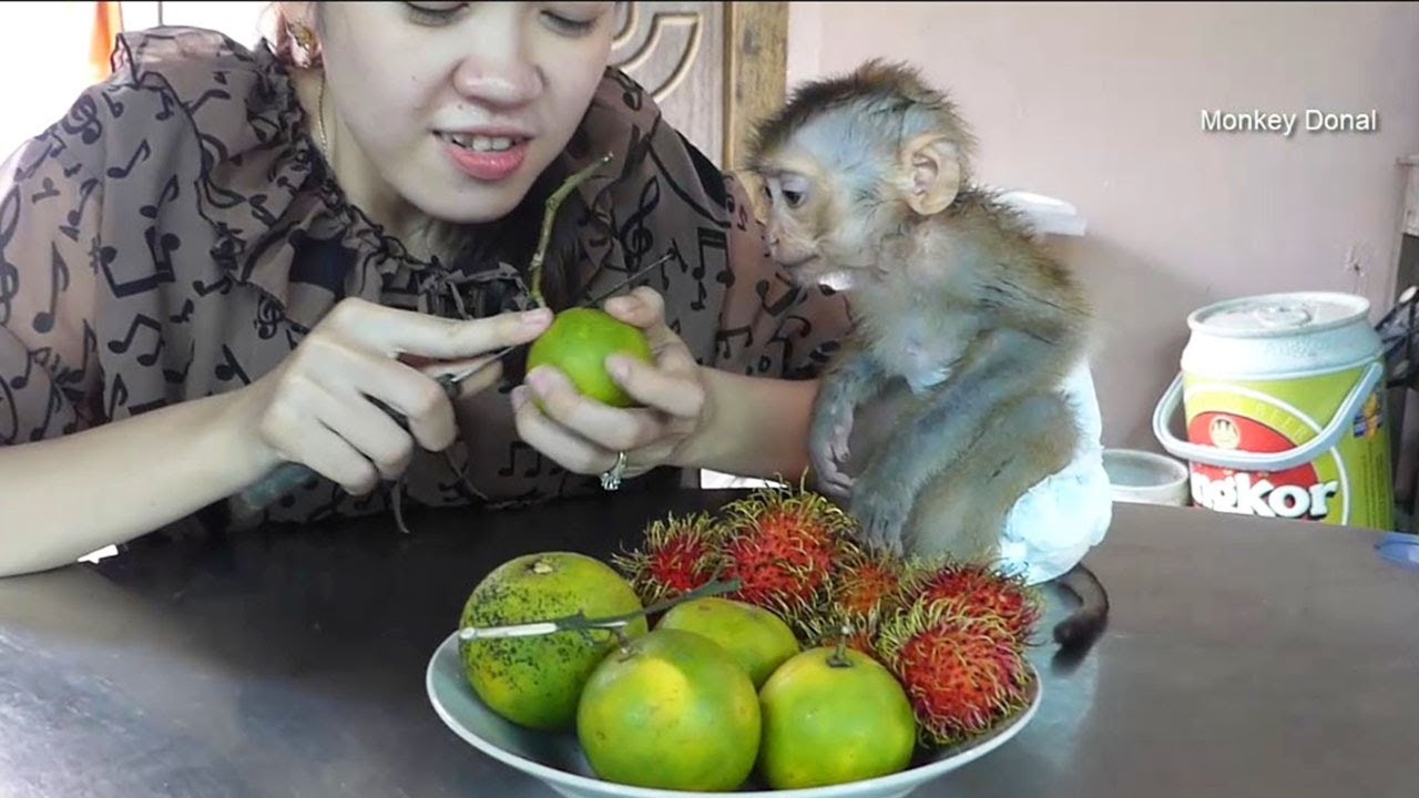 Donal Sitting Wait Mom Feed Fruit With Feeling Cool After Take A Bath
