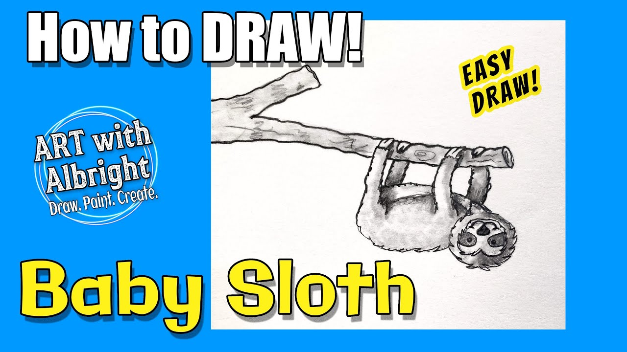 how to draw baby sloth art with albright step by step