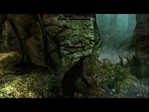 The Elder Scrolls V: Skyrim Dual Wield Rogue Gameplay |
