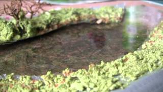 N Gauge Model Railway Part 31 A Quick Pond By Shed Engineering